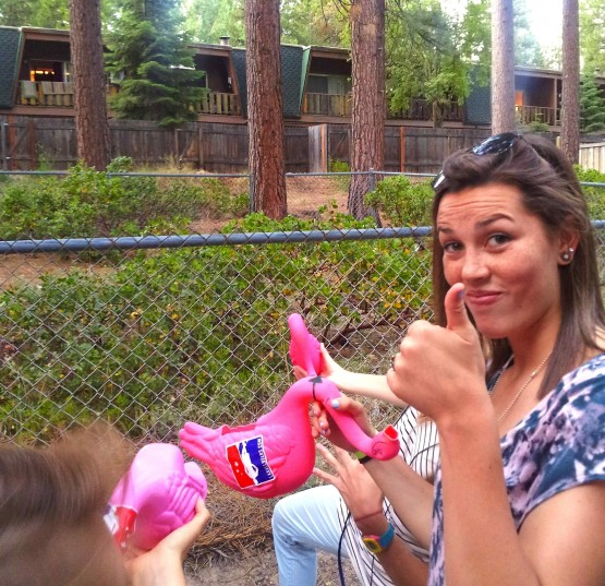 las_flamingo_james_tupper