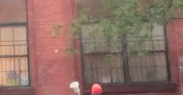 nyc_wall_ball_lacrosse