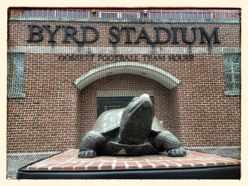 maryland_terp_turtle