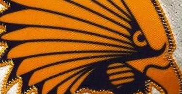 iroquois_lacrosse_logo-e1348063709362