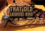 that_old_lacrosse_head_brine_oz