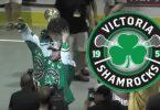 victoria_shamrocks