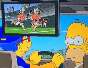 The Simpsons Lacrosse episode
