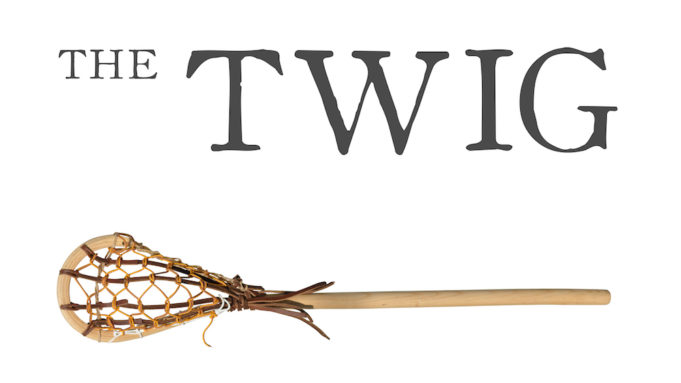 the twig
