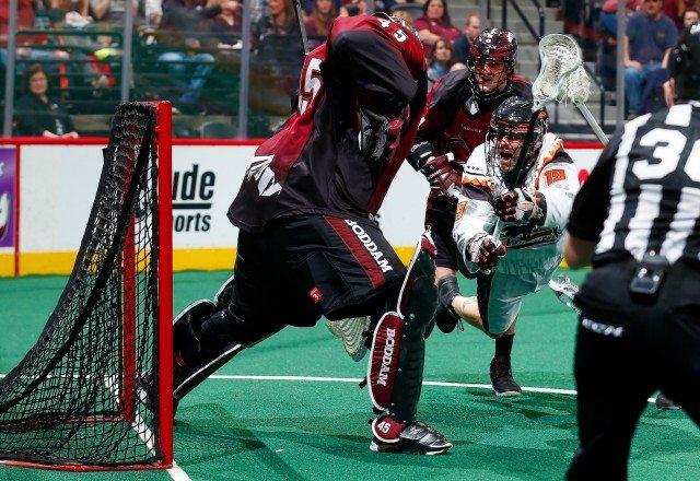 Dillon Ward NLL Photo: Jack Dempsey box lacrosse goalie