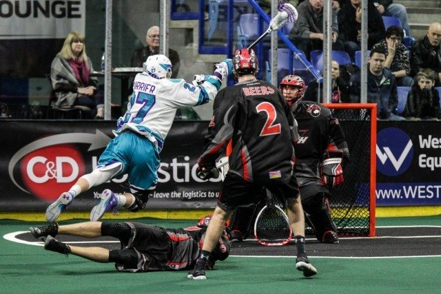 NLL Media Poll 2017 Vancouver Stealth vs Rochester Knighthawks Photo: Dan Brodie