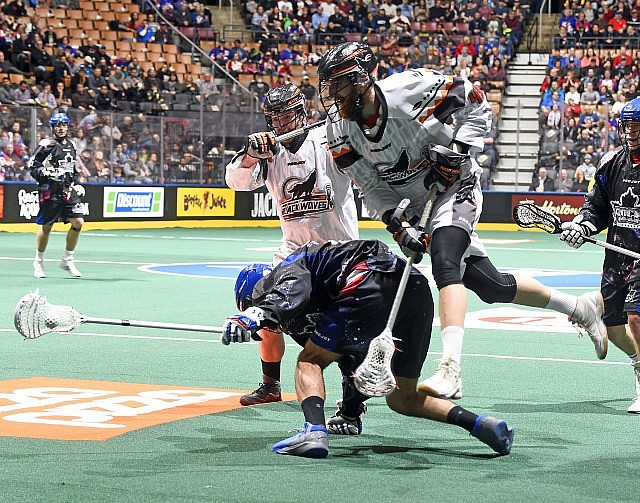 NLL Media Poll New England Black Wolves vs Toronto Rock 2017 Photo: Graig Abel