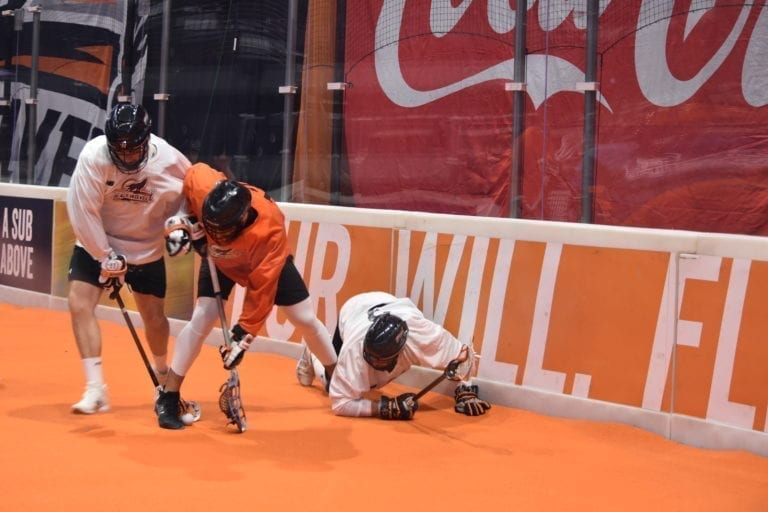 new england black wolves national lacrosse league nll