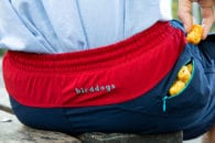 Birddogs Gym Shorts: built-in underwear