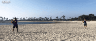 san diego seals beach lacrosse nll national lacrosse league