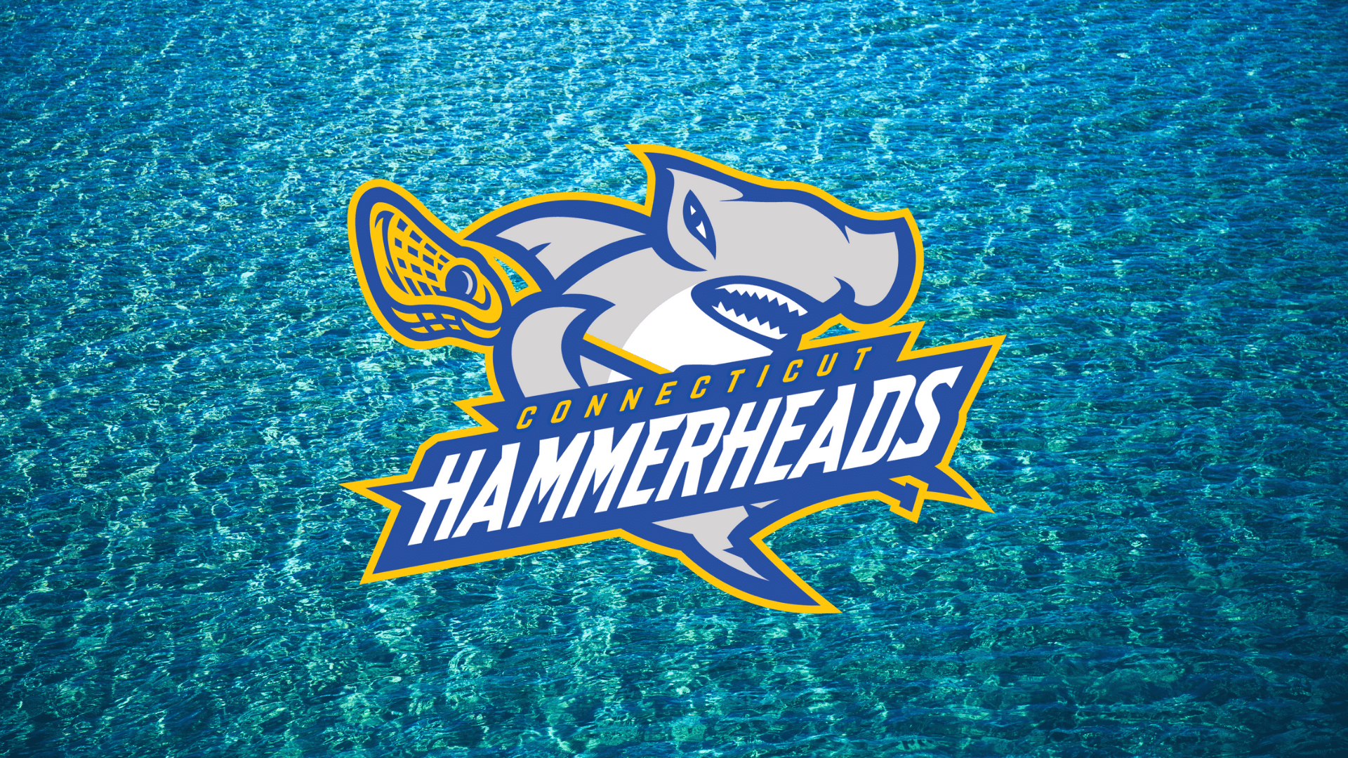 connecticut hammerheads mll major league lacrosse